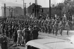 Většinu sudetoněmeckých mužů, kteří s nadšením vítali připojení k Říši, čekal smutný osud. Brzy je jejich fýrer povolal do války, kde na 300 000 z nich našlo svou smrt, většinou na východní frontě. Další stovky tisíc skončily s vážným zraněním.