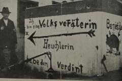 Po podpisu mnichovské dohody už ztratili tzv. sudetští Němci veškeré zábrany.  Nenávist vůči všemu českému se projevovala ničením státních symbolů, českých škol, četnických stanic i dalšího majetku a násilím proti Čechům, Židům i protinacistickým Němcům.  Na mnoha místech vyrazily do ulic nacistické bojůvky, aby si to vyřídili s bývalými protivníky. Znovu tekla krev. Nebylo výjimkou, že jejich oběti byly v noci vytaženi ze svých postelí a jen v tom co měli na sobě byli za neustálého bití a hanlivého pokřiku hnáni až na nově stanovenou hranici s tím, že když se vrátí, budou zastřeleni.