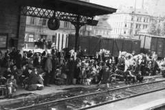 Nejčastějším prostředkem útěku z pohraničí byl vlak. Stanice ve výchozích místech byli přeplněny uprchlíky, kteří čekali na vlak. V cílových stanicích byla nádraží zase přeplněna lidmi, kteří sice utekli před nejhorším, ale často neměli kam jít a neměli ani prostředky na uspokojení základních potřeb. Pomáhaly jim různé charitativní organizace jako například Čs. červený kříž, Sokol, Skaut,dělnické spolky apod.